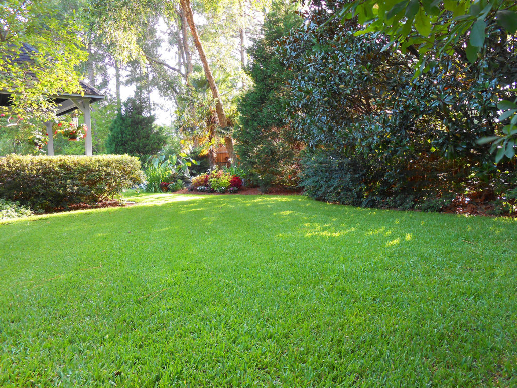Lawn Treatment Fertilizer Pest Control Summerville
